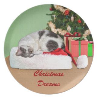 Personalizable de la placa del gato el dormir de l plato de cena