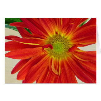 Personalizable de la tarjeta de felicitación de la