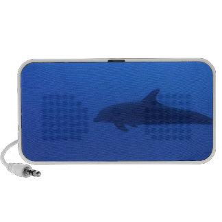 Personalizable del delfín del delfín