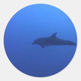 Personalizable del delfín del delfín pegatinas redondas