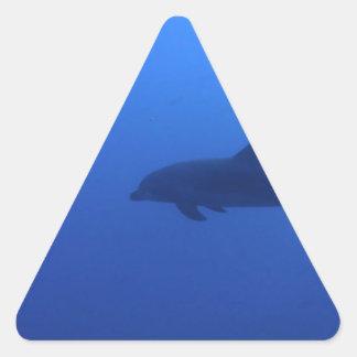 Personalizable del delfín del delfín pegatinas triangulo personalizadas