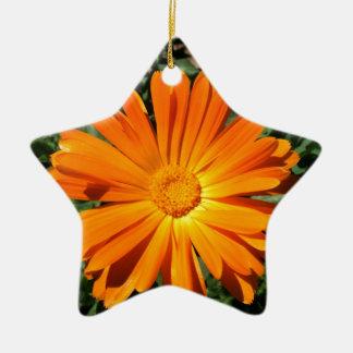 Personalizable del diseño de la margarita adorno navideño de cerámica en forma de estrella