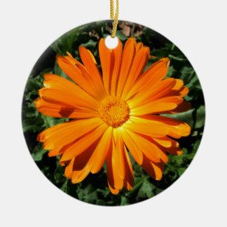 Personalizable del diseño de la margarita adorno navideño redondo de cerámica