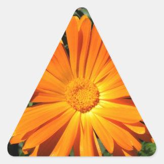 Personalizable del diseño de la margarita calcomanía triangulo personalizadas