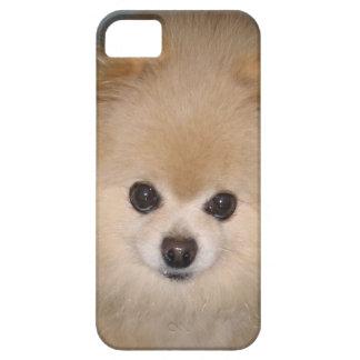 Personalizable del perro de Pomeranian iPhone 5 Funda