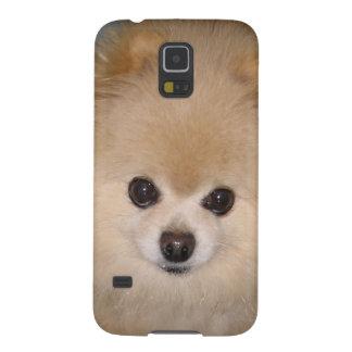 Personalizable del perro de Pomeranian Fundas Para Galaxy S5