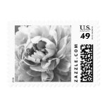 Personalizable Gray / Grey Peony Postage Stamps