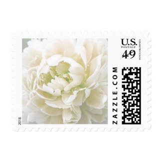 Personalizable Ivory Peony Floral Postage Stamps