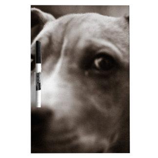 PERSONALIZABLE lindo de la cara del perro Tablero Blanco