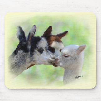 Personalizable tres alpacas Mousepad Tapetes De Raton