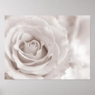 Personalizado color de rosa blanco y poner crema d póster