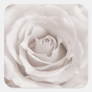 Personalizado color de rosa blanco y poner crema pegatina cuadrada