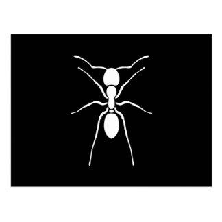 Personalizado de la silueta de la hormiga blanca postal