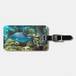 Personalizado de los pescados del filón etiquetas para maletas