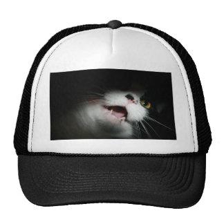 Personalizado grosero y refranes del gato gorros bordados