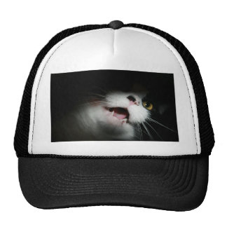 Personalizado grosero y refranes del gato gorras