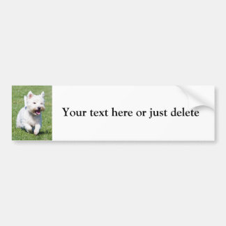 Personalizado lindo blanco de la foto de Terrier d Pegatina Para Auto