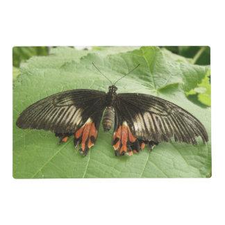 Personalizado negro bonito de la mariposa del rojo salvamanteles