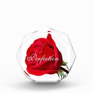 Personalizar color de rosa de acrílico del Premio-