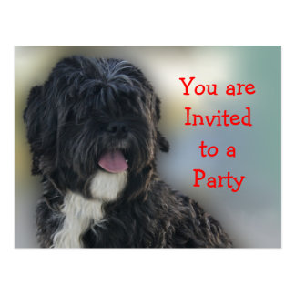 Personalizar de la invitación del fiesta postales