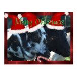 Personalizar de la postal de la cabra de las Felic