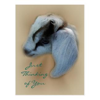 Personalizar de la postal de la cabra del niño