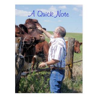 Personalizar de Pinzgauer Bull y de las vacas Postal
