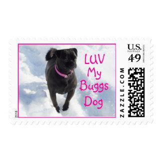 Personalizar del sello del perro 2 de Buggs
