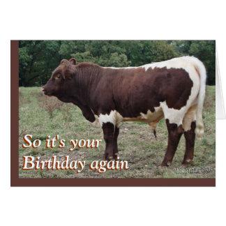 Personalizar joven de Pinzgauer Bull cualquier Tarjeta De Felicitación