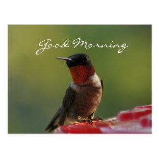 Personalizar masculino de la postal del colibrí