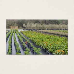 Garden nursery business cards templates zazzle personalize 2 sided nursery and gardening business card accmission Image collections