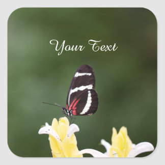 (Personalize) Butterfly Perched on Flower Square Sticker