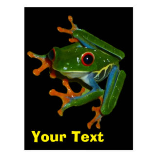 Personalize Costa Rica Red Eyed Frog Postcard