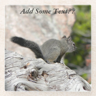 (Personalize) Dark Pine Squirrel on Weathered Log Glass Coaster