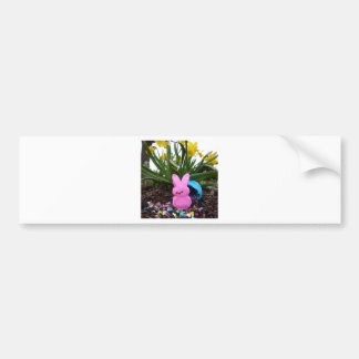 Personalize Easter Bunny Peace Love Art Destiny Car Bumper Sticker