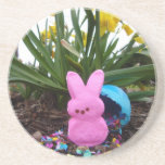 Personalize Easter Bunny Peace Love Art Destiny Coaster