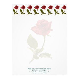 Personalize:  Floral Photography - One Red Rose Letterhead