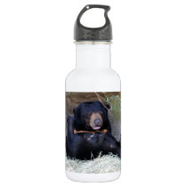 Personalize Honey Bear (Sun Bear) Photo Stainless Steel Water Bottle