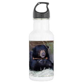 Personalize Honey Bear (Sun Bear) Photo Stainless Steel Water Bottle