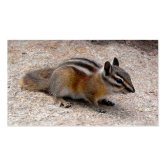 Personalize-Little Chipmunk on Path Business Cards