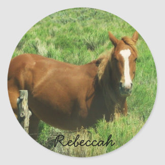 Personalize Name Horse Round Stickers