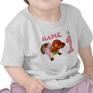 Personalized 1st Birthday Shirts for Girls