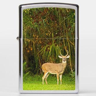 Personalized 4 point Buck Deer animal Zippo Lighter