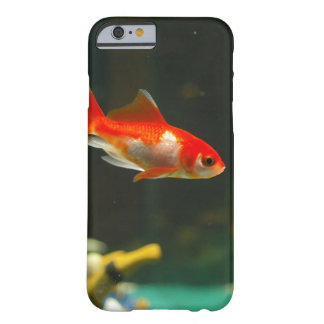 Personalized Aquarium Specialty Gold Fish Barely There iPhone 6 Case