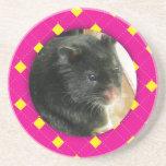Personalized Argyle Hamster Photo Coasters