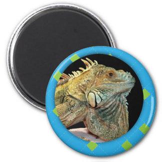 Personalized Argyle Iguana Photo 2 Inch Round Magnet
