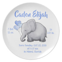 Personalized Baby Boy Birth Stat Elephant Nursery Dinner Plate