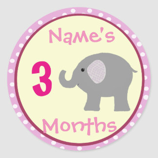 Personalized Baby Girl Elephant Month Stickers