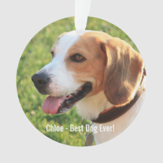 Personalized Beagle Dog Photo and Dog Name Ornament