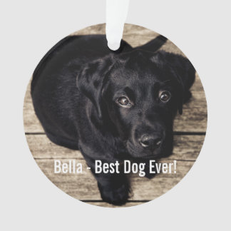 Personalized Black Lab Dog Photo and Dog Name Ornament
